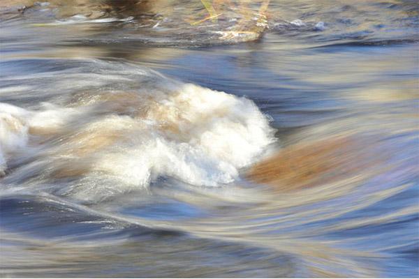 Herramienta para prever la demanda y precios de los servicios del agua