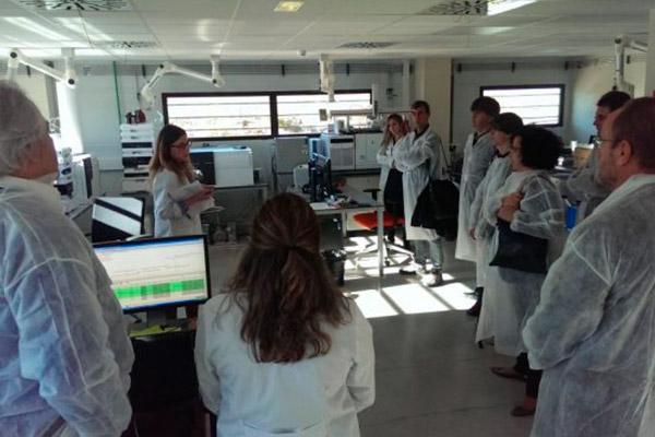 Línea de investigación y proyectos de IMDEA AGUA