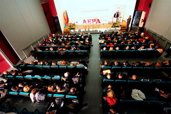 VI Edición Premios Empresariales AEPA 2016